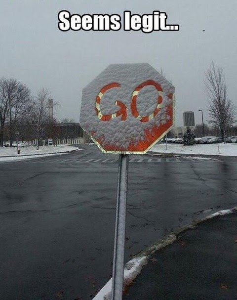 funny stop sign snow go