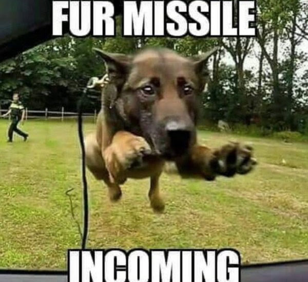 fur missile incoming