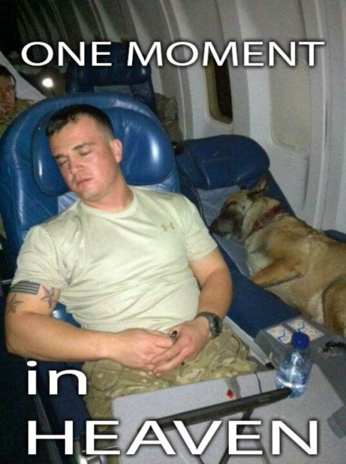 one moment in heaven dog soldier