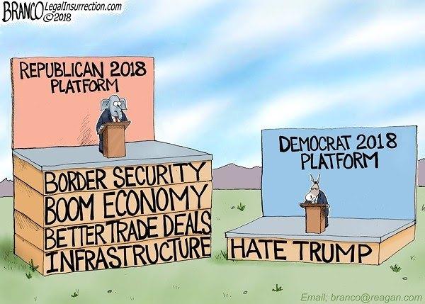 republican platform democratic platform political cartoon