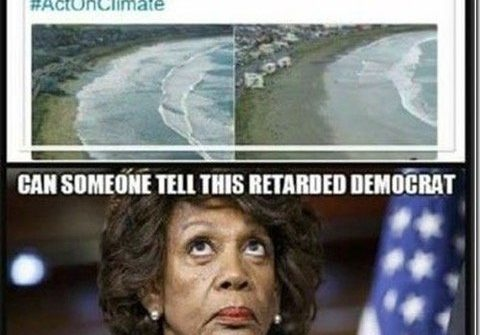 maxine waters high tide low tide tweet