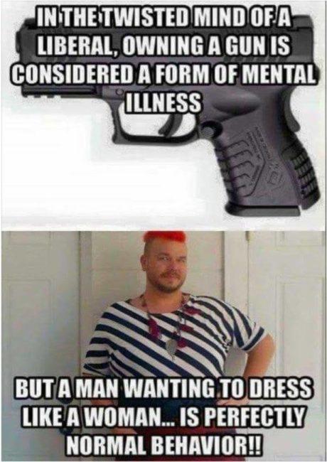 liberals consider owning a gun a form of mental illness