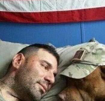 camaraderie soldier dog