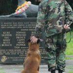 dog soldier memorial