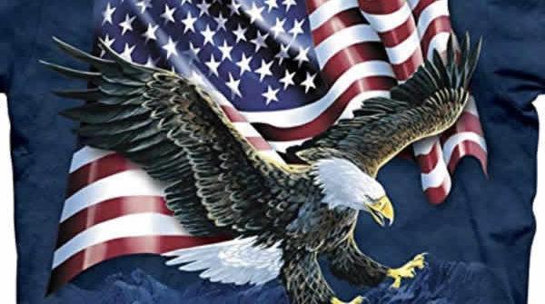 awesome bald eagle american flag t-shirt