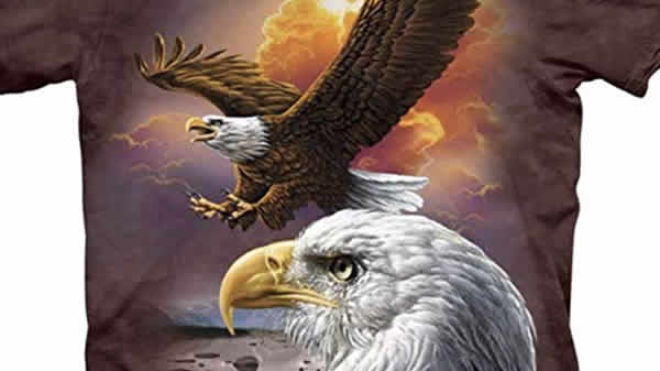 bald eagle sunset t-shirt