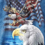 double bald eagle american flag t-shirt