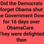 government shutdown democrats