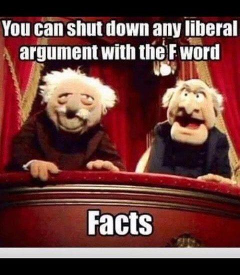 liberals facts