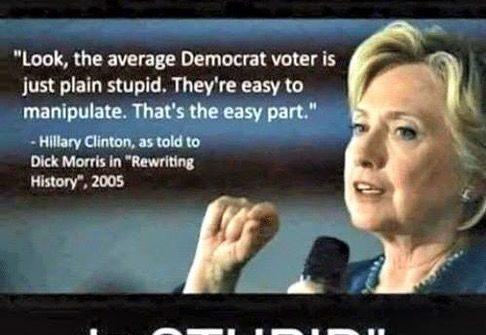 hillary clinton democrat voting stupid