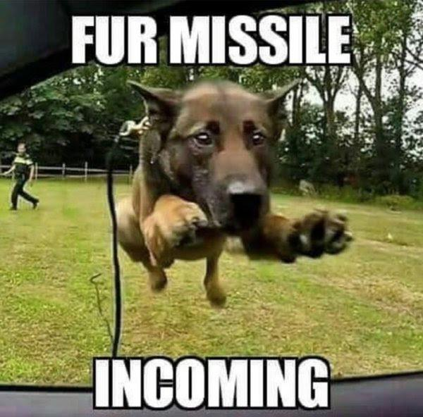 fur missile incoming
