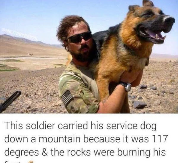 soldier carries dog down mountain