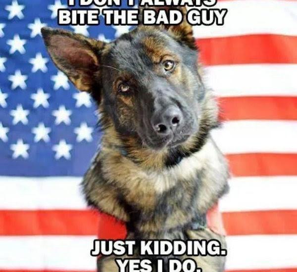 I don't always bit the bad guy just kidding yes I do