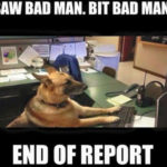 saw bad man bit bad man end of report
