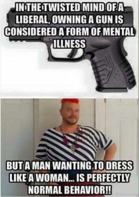 liberals consider owning a gun a form of mental illness