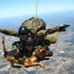 soldiers skydiving with dog
