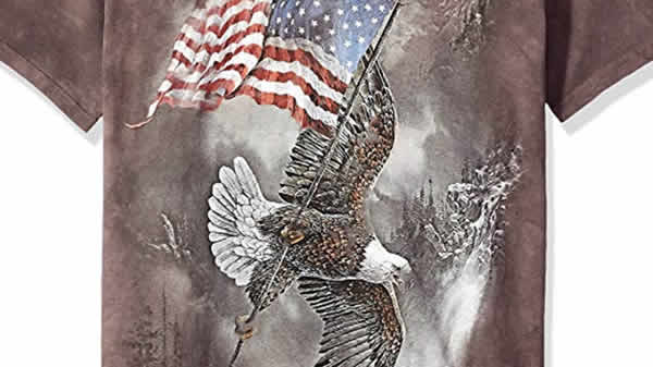 bald eagle american flag winter t-shirt