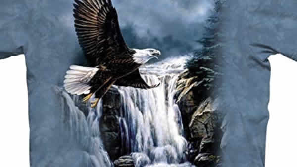 bald eagle waterfall patriotic t-shirt