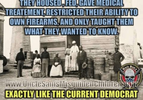 democrats plantation