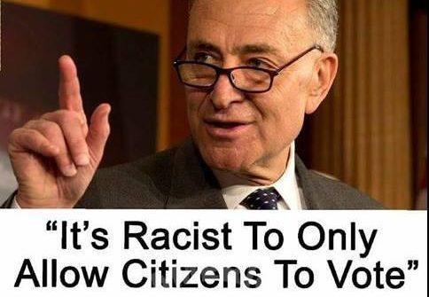 chuck schumer racist voting