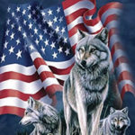 wolf american flag t-shirt
