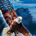 bald eagle stars and stripes blanket