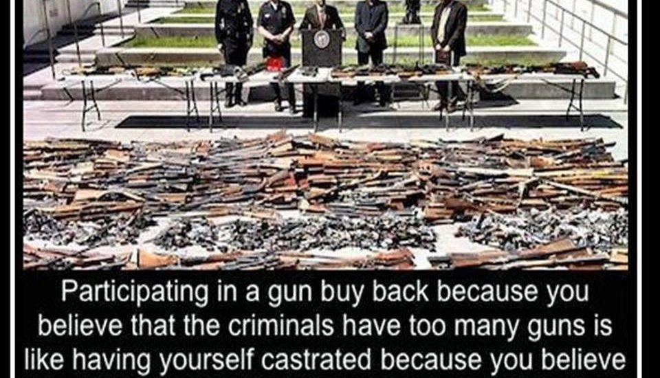 gun buy pack program